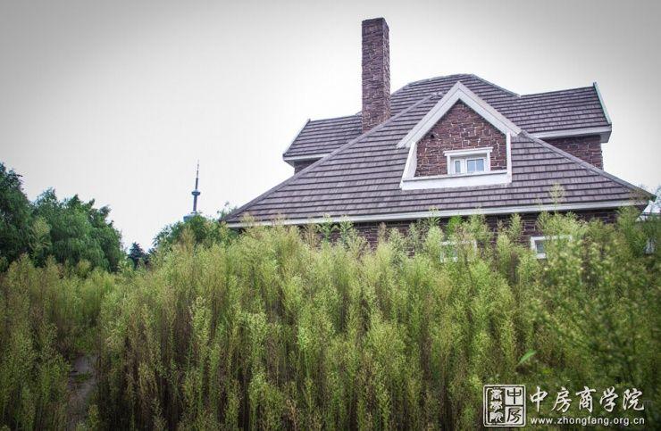 简陋的铁片很不起眼的土路——废弃的别墅